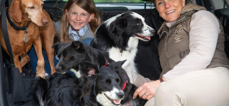 Unsere Hunde auf Reisen